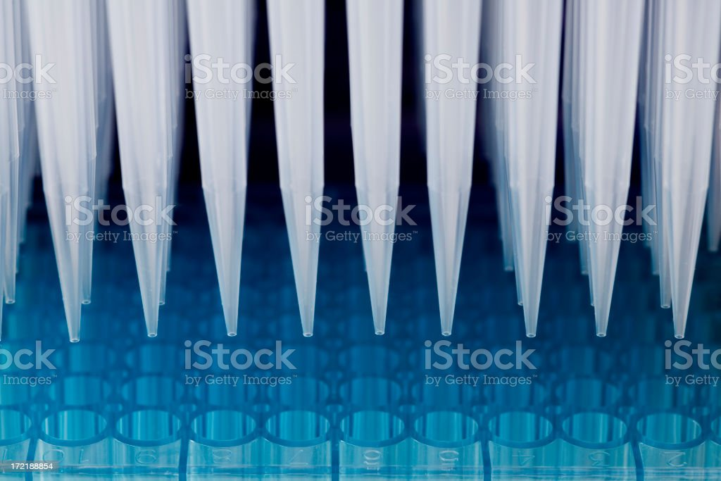 DNA analysis royalty-free stock photo