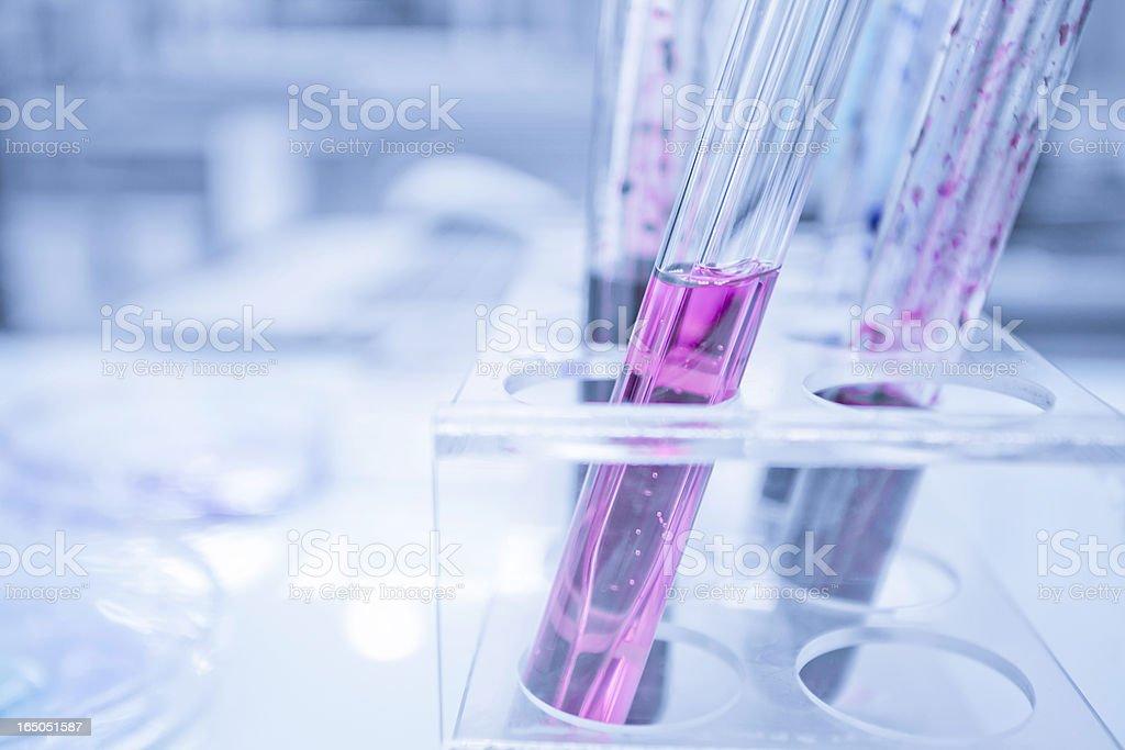 Analyzing samples stock photo