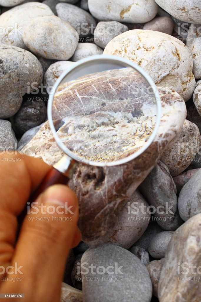 Analyzing with magnifier stock photo