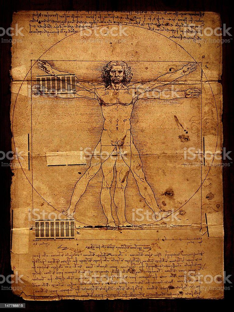 Anatomy art royalty-free stock photo