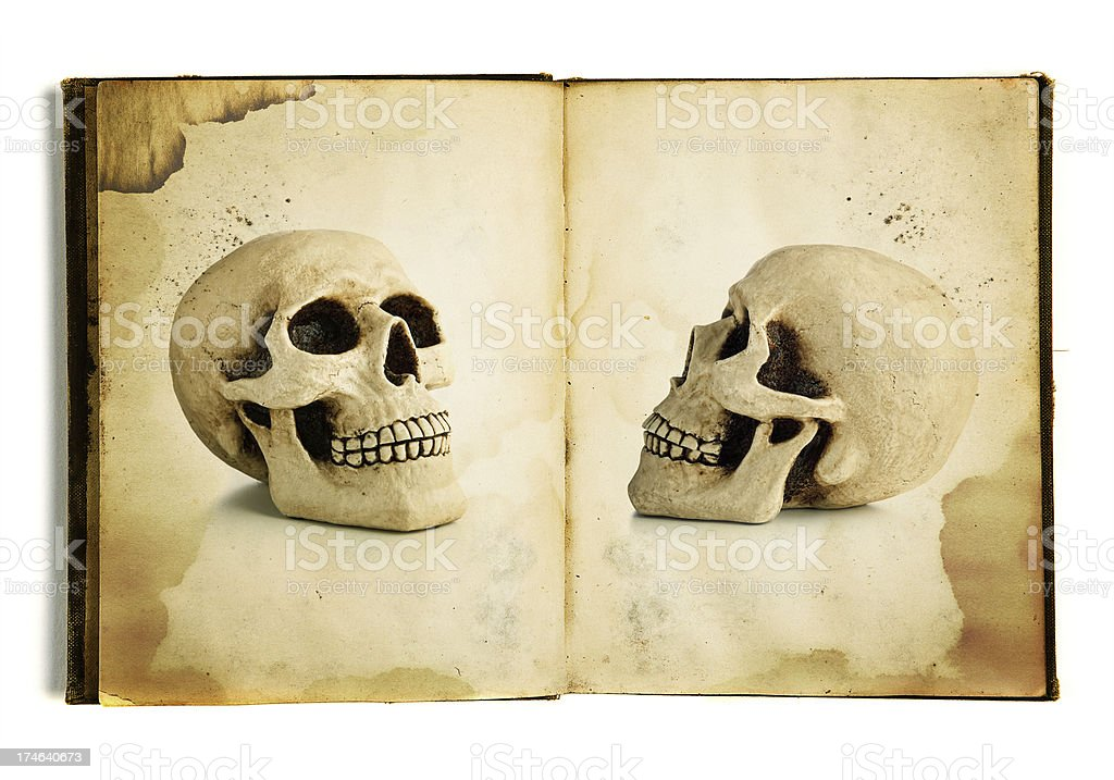 anatomy book royalty-free stock photo