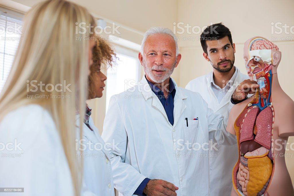 Anatomy class stock photo