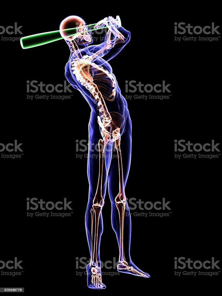 Anatomy of a Baseball Batting stock photo