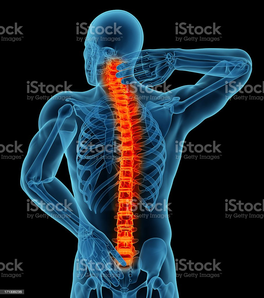 Anatomy of a man showing back pain royalty-free stock photo