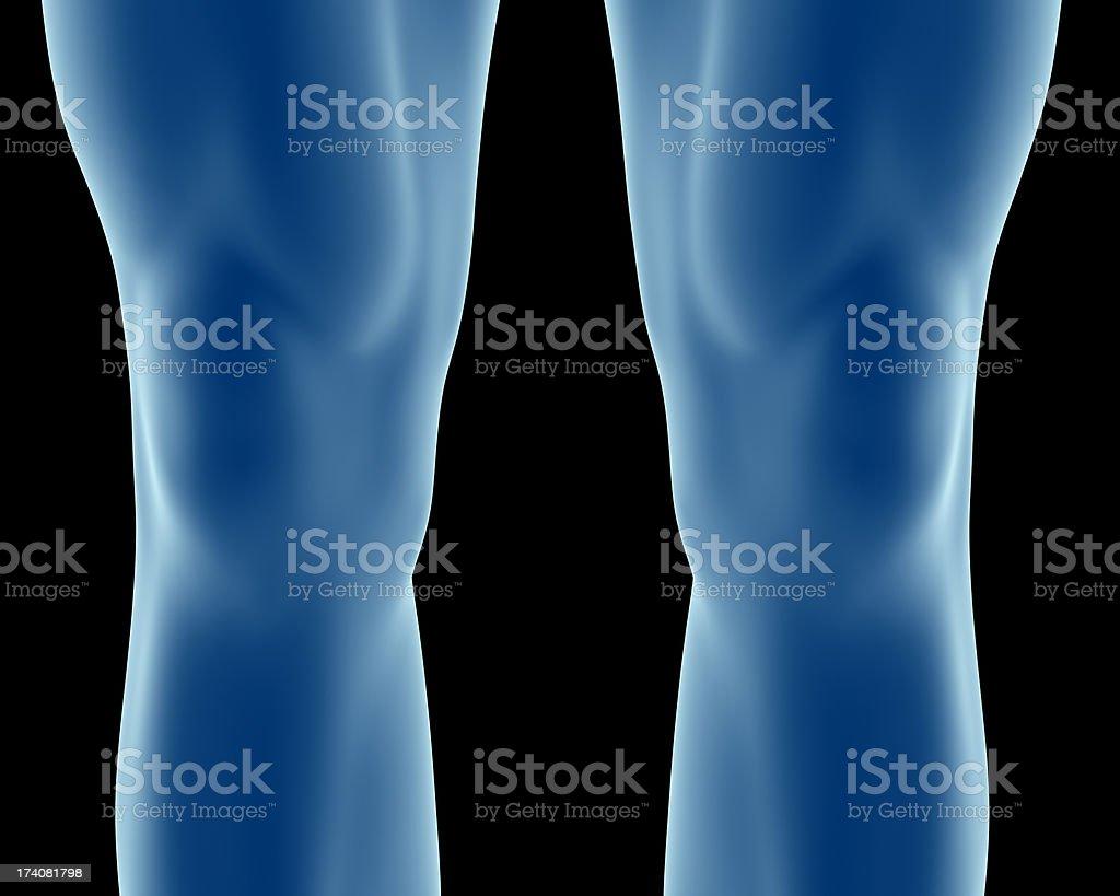 Anatomy of the human knee, with skin stock photo