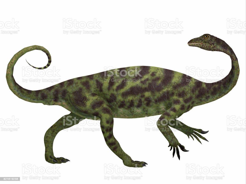 Anchisaurus Dinosaur Side Profile stock photo