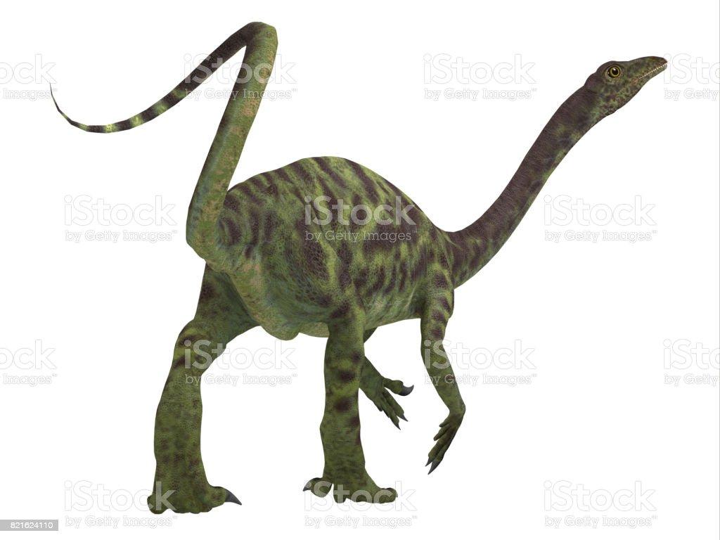 Anchisaurus Dinosaur Tail stock photo