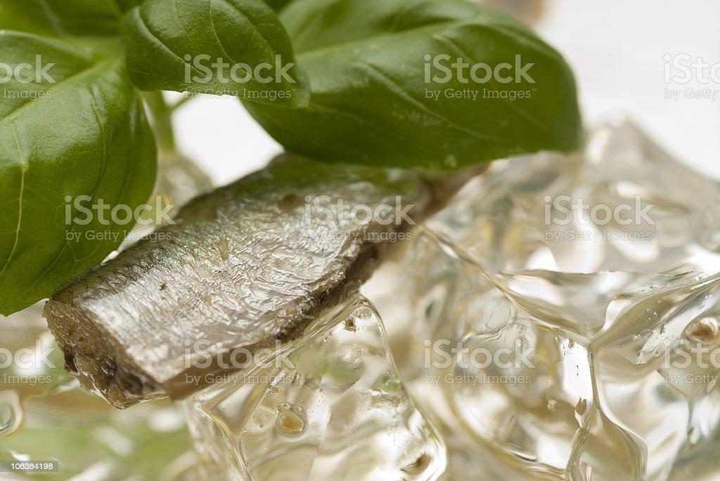 Anchovis su ghiaccio. foto stock royalty-free