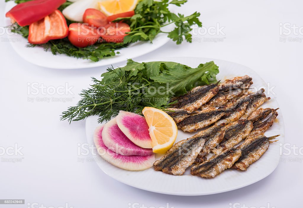 anchovy fish stock photo