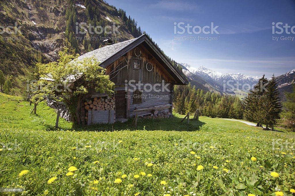 ancient alpine hut, tirol, austria in spring stock photo