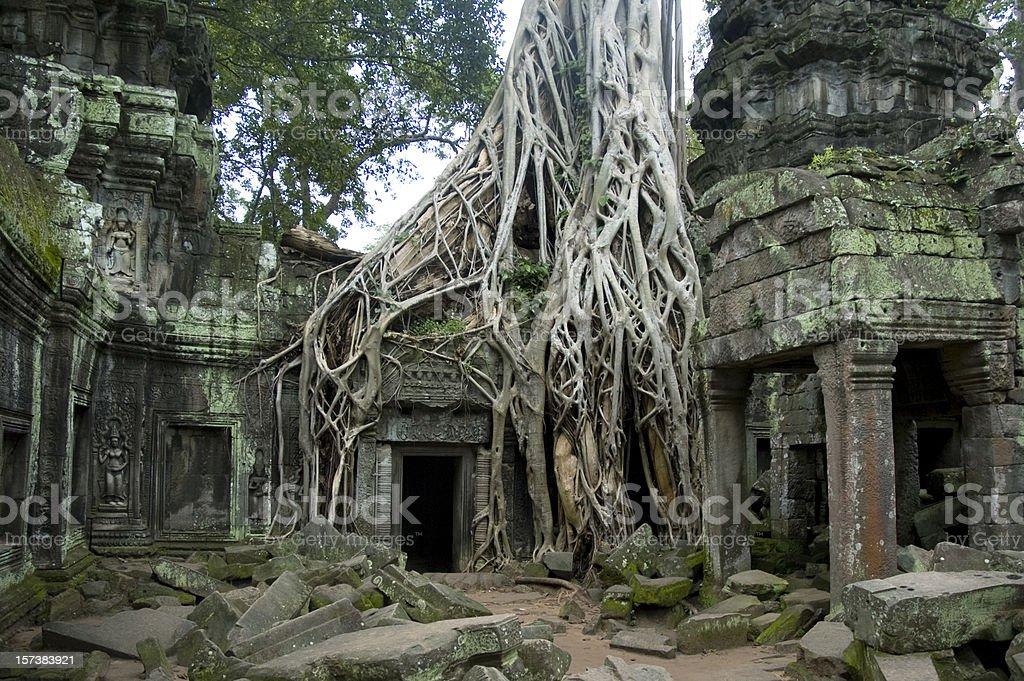 Ancient Angkorian Ruins Of Ta Prohm In The Jungle, Cambodia stock photo