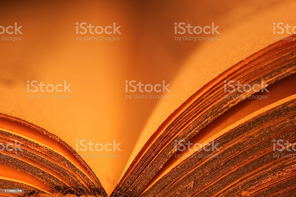 Ancient Book royalty-free stock photo
