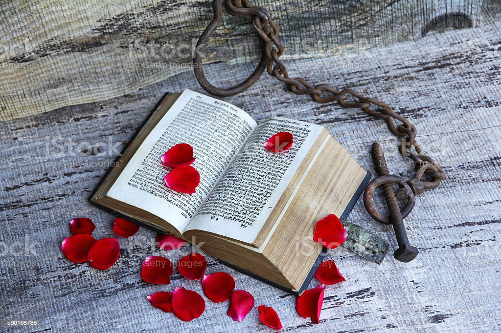 ancient book with rose petals and chain stock photo