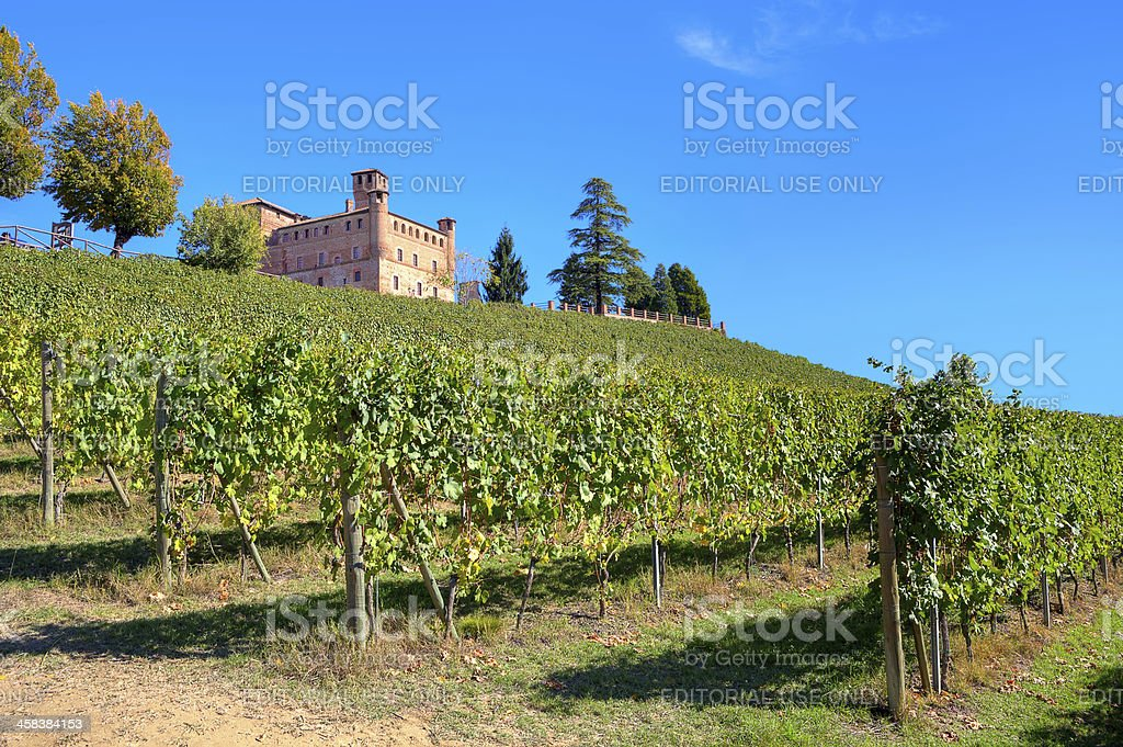 Ancient castle and vineyards in Piedmont, Italy. royalty-free stock photo
