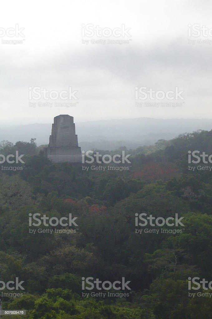 Ancient city of Tikal stock photo