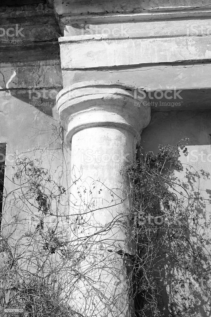 Ancient column closeup / black and white photo stock photo
