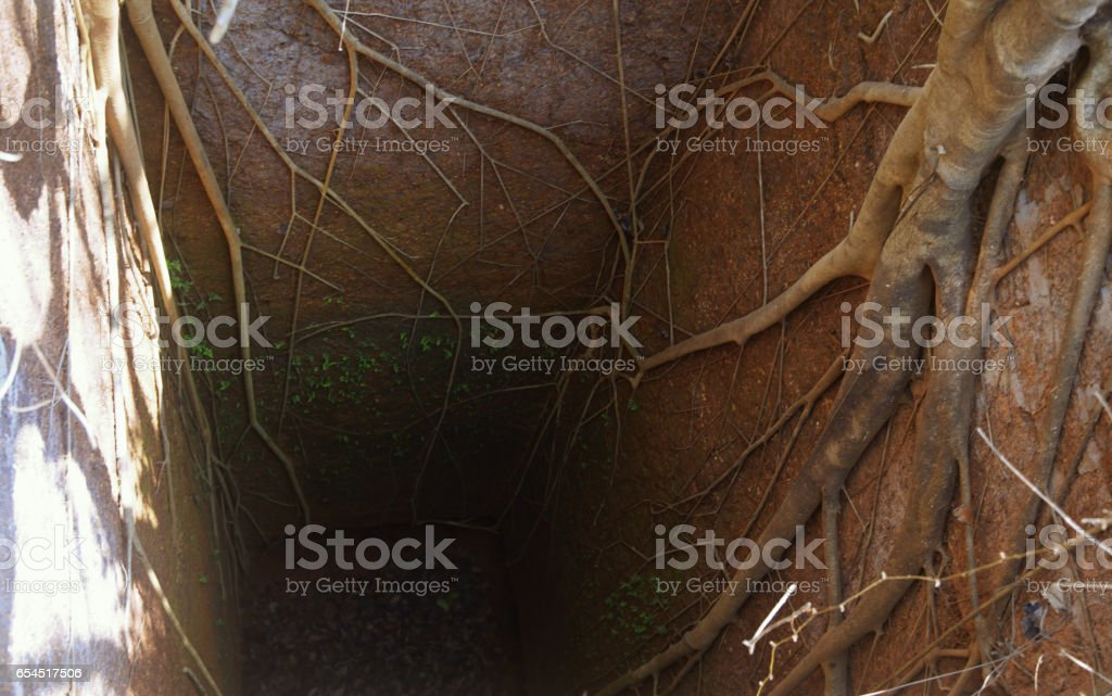 Ancient deep well with roots of banyan tree stock photo