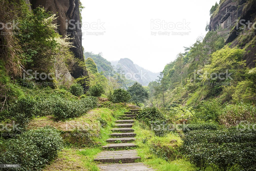 Ancient footpath in Wuyi Mountains stock photo