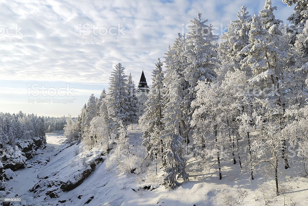 Ancient forest in Imatra royalty-free stock photo