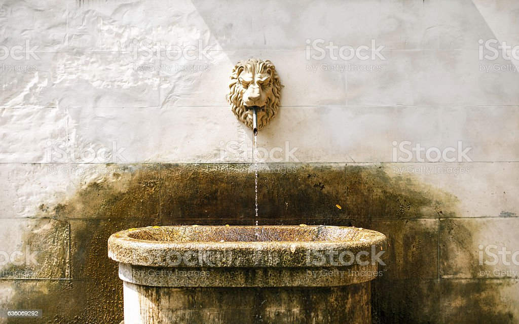 Ancient fountain with lion head stock photo