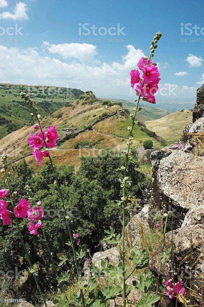 Ancient Gamla city at the Golan Hights,Israel stock photo