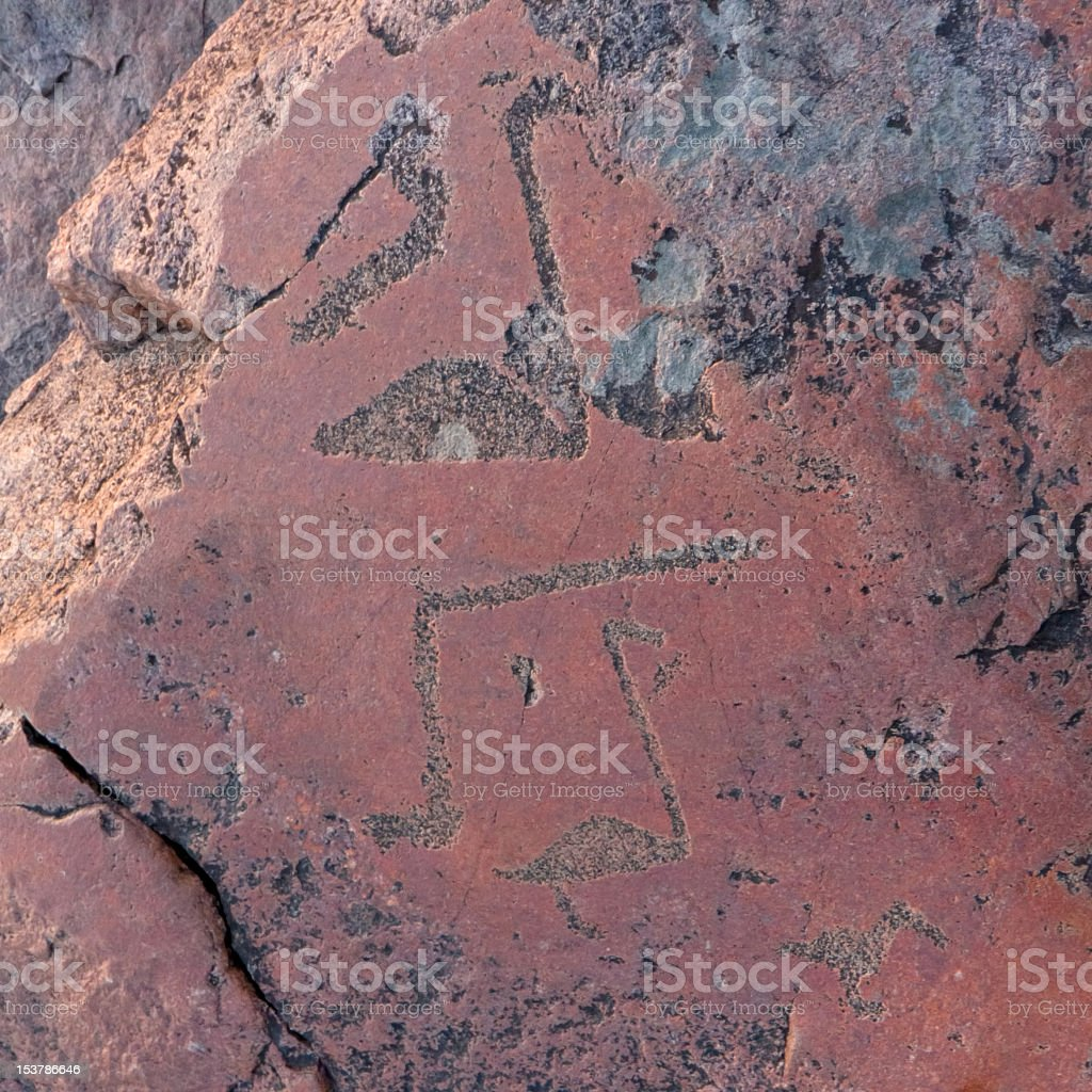 Ancient Onega's petroglyph with swans carved on granite surface royalty-free stock photo