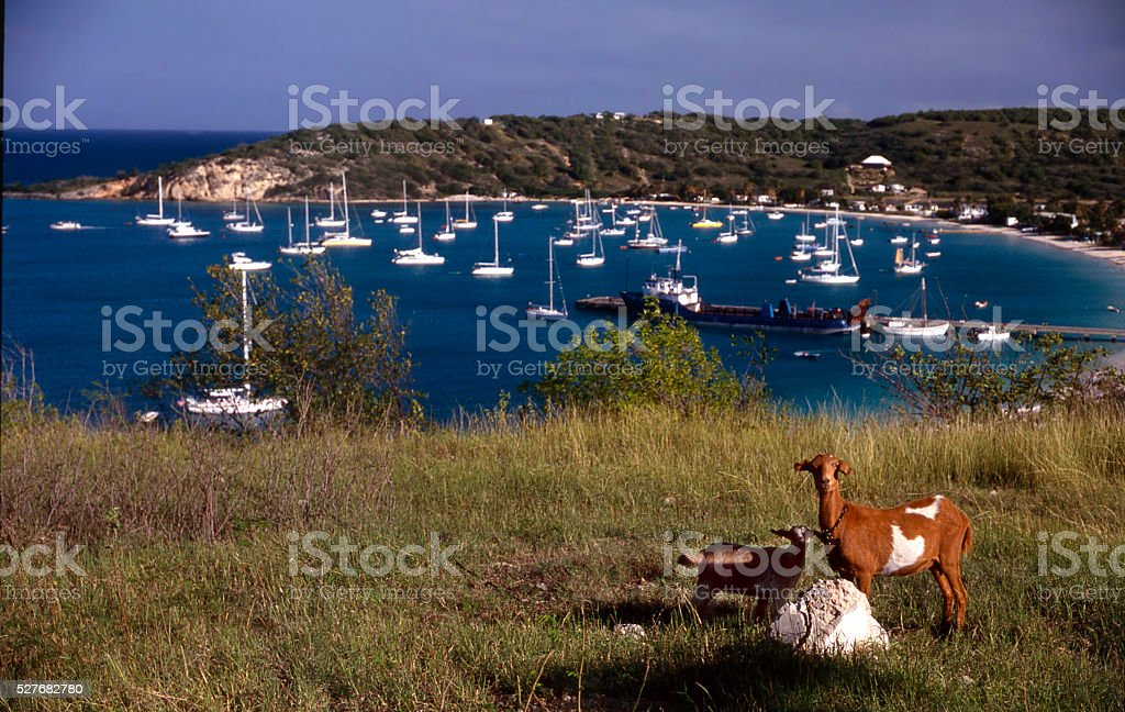 Antigua stock photo