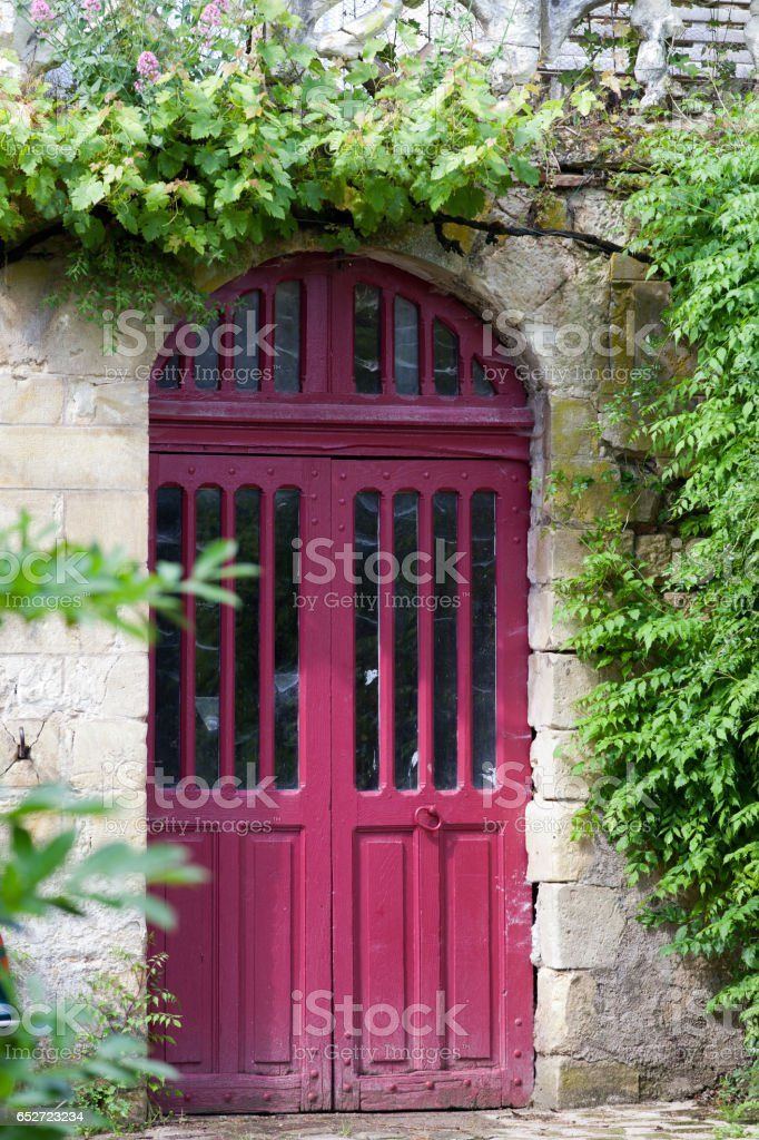 ancient red door with grapevine stock photo
