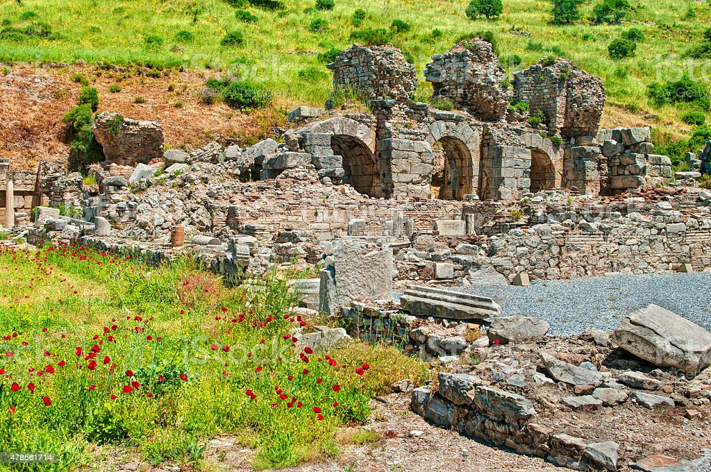 ancient roman ruins of Ephesus with red poppy flowers stock photo
