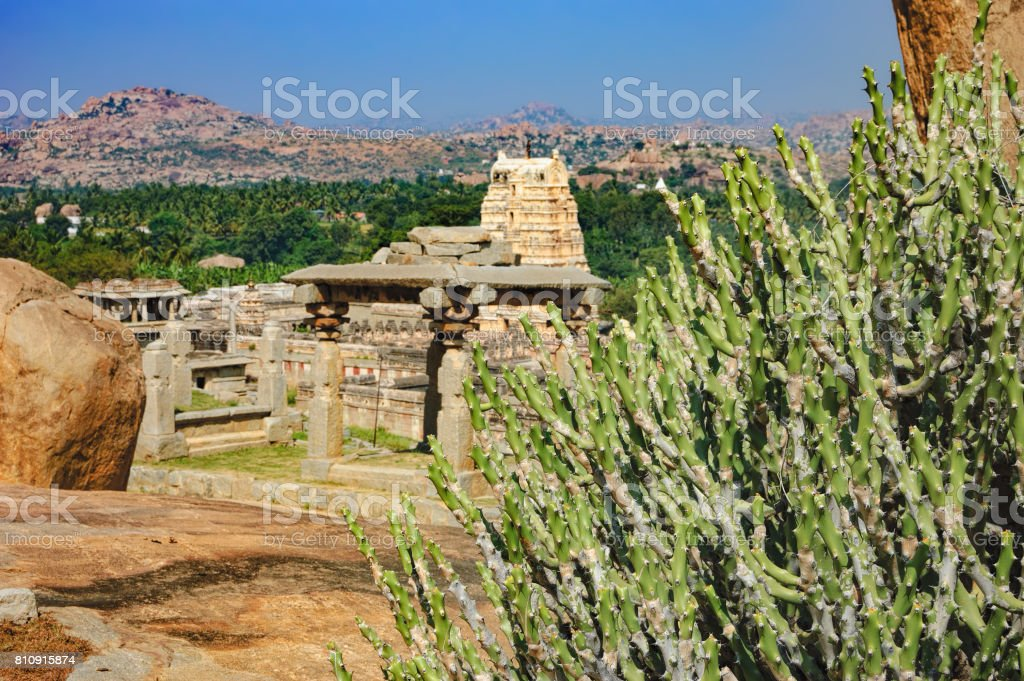 Ancient ruins and tropical plants in Hampi, India stock photo