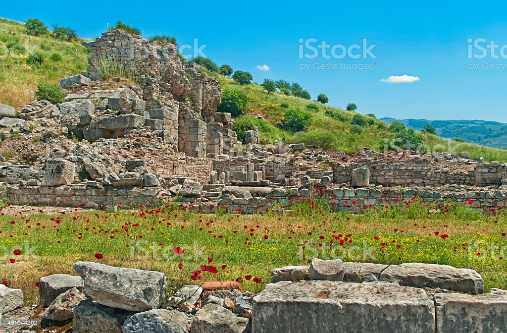 ancient ruins with red poppy flowers stock photo
