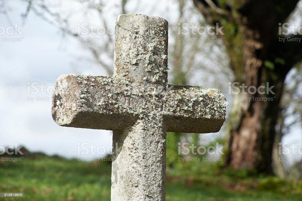 Ancient stone cross, 'cruceiro', oak tree. stock photo