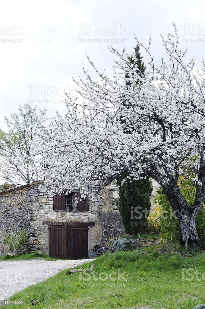 ancient stone house in spring,Provence, France royalty-free stock photo