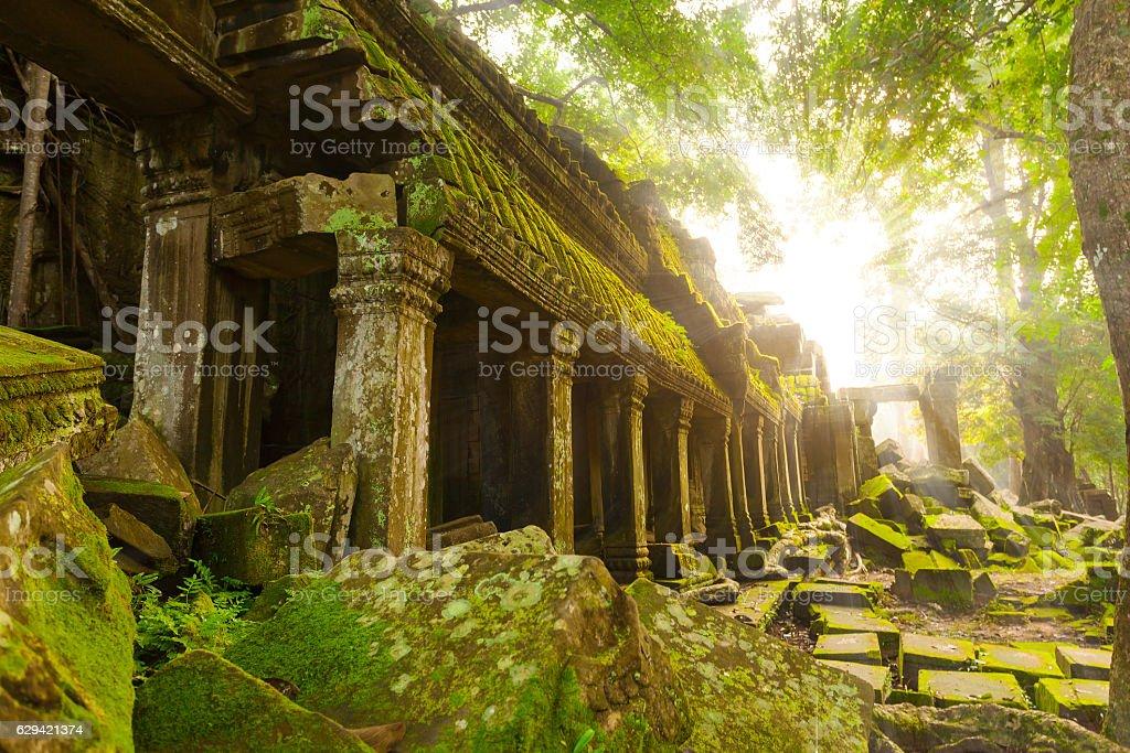 Ancient Ta Prohm Temple, Angkor, Cambodia stock photo