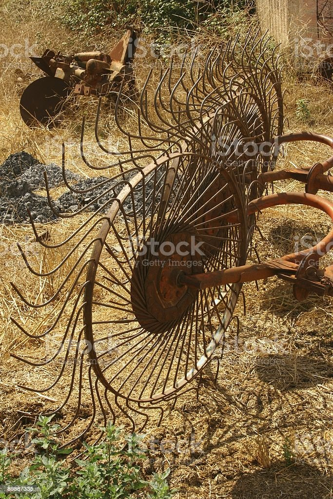 Ancient tools in wheat field stock photo