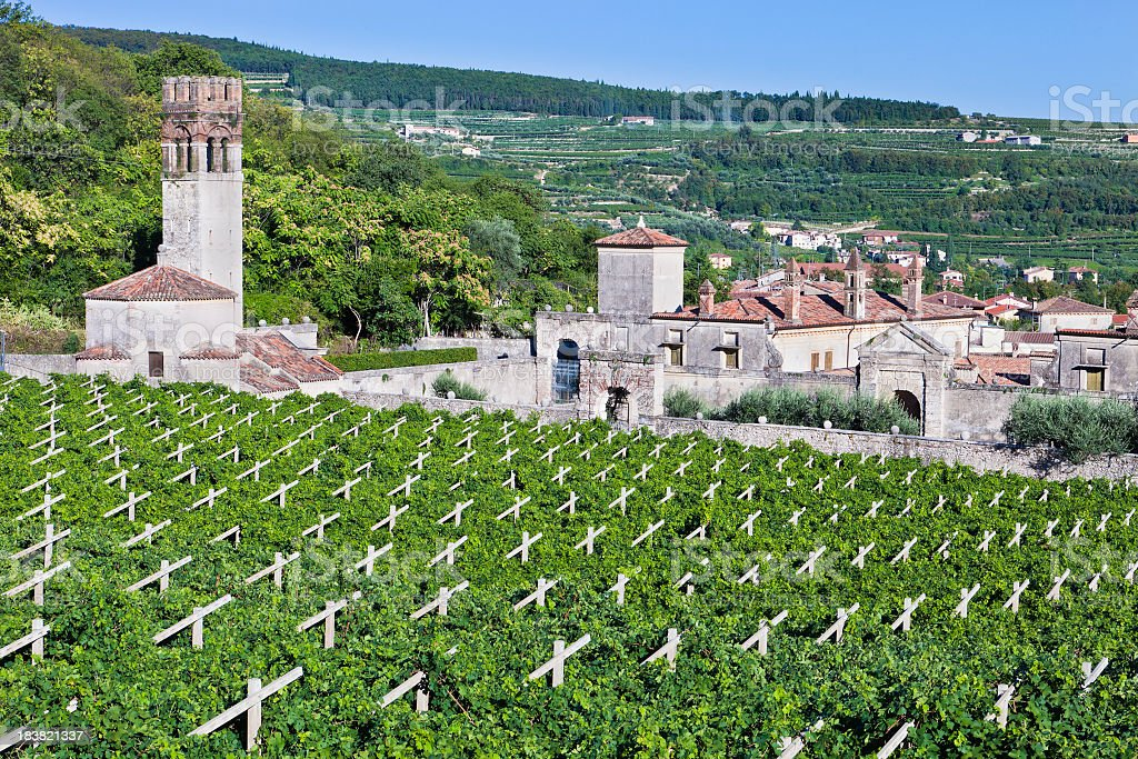 Ancient Villa Among Vineyards, Valpolicella, Italy royalty-free stock photo
