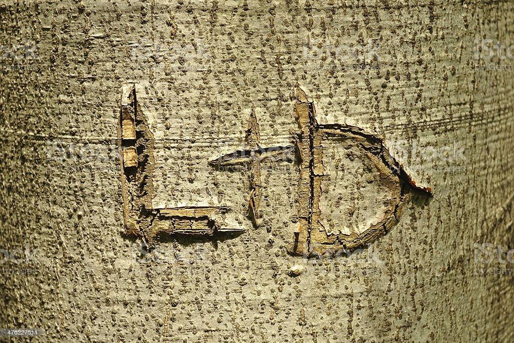 L I D litery rzeźbione w Pień drzewa zbiór zdjęć royalty-free