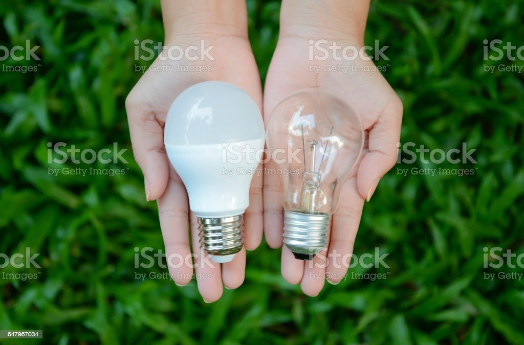 LED and Fluorescent bulb comparing on woman hand for alternative technology concept stock photo