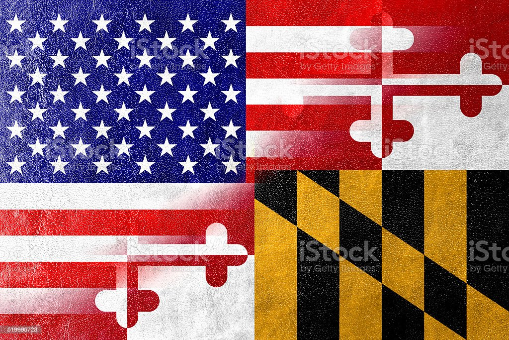 USA and Maryland State Flag painted on leather texture vector art illustration