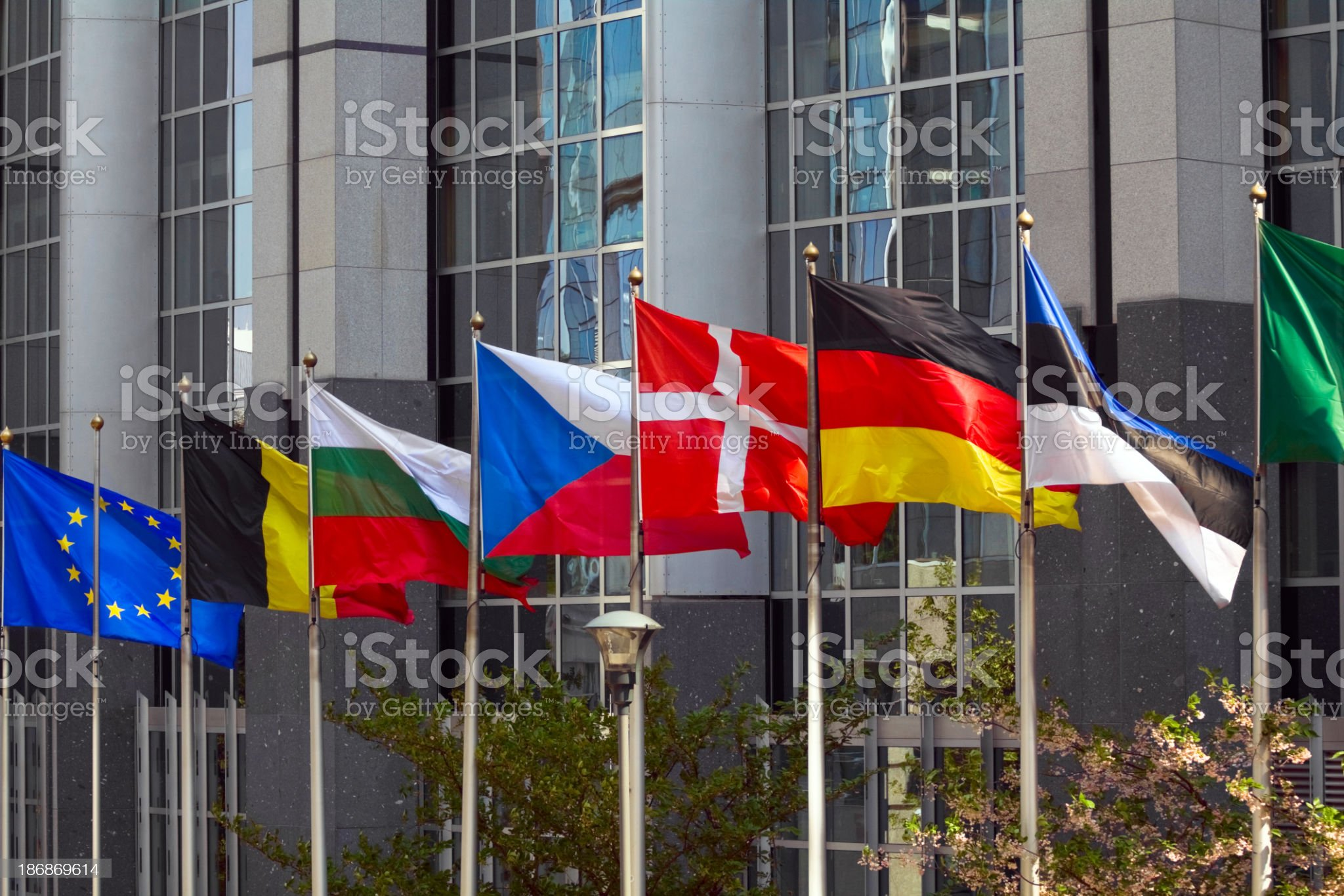EU and member flags royalty-free stock photo