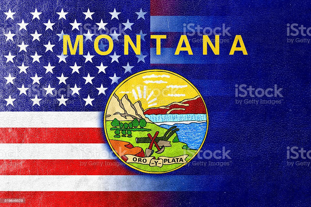 USA and Montana State Flag painted on leather texture stock photo