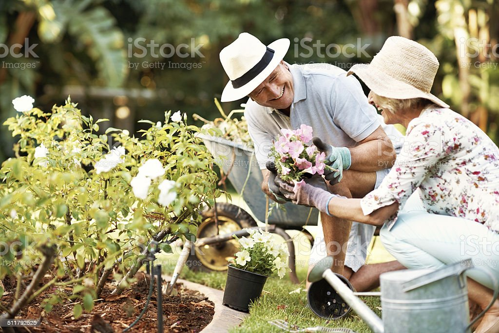 And this bunch is for you my flower! stock photo