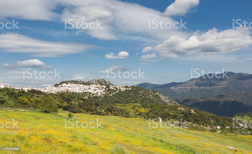 Andalusian spring stock photo