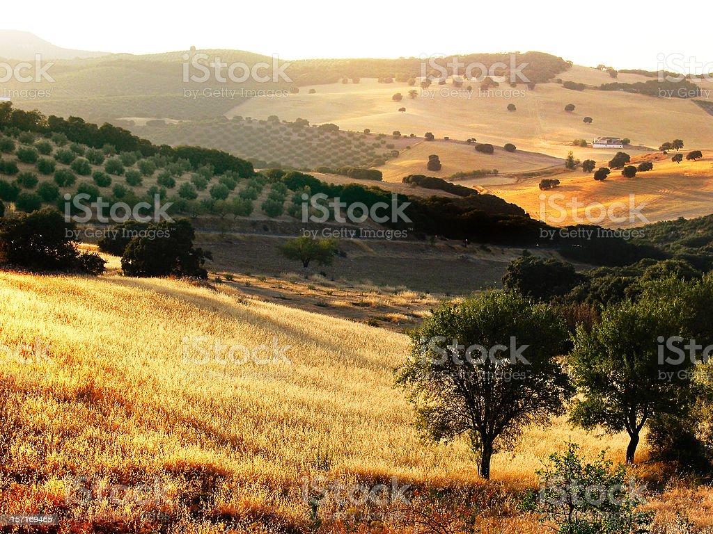 andaluzia stock photo