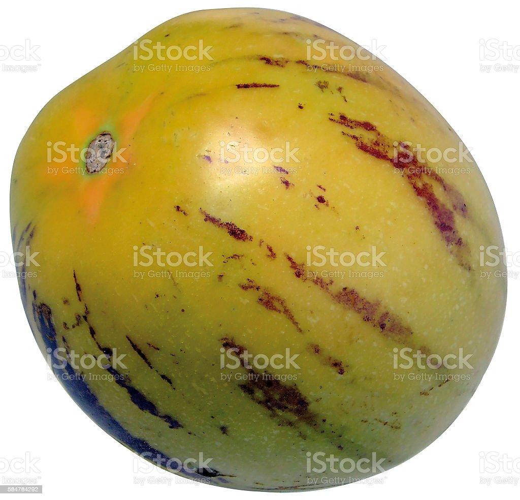Andean melon stock photo