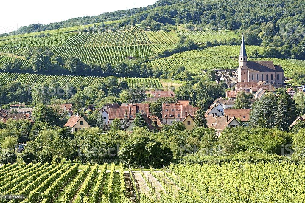 Andlau (Alsace, France) - Vineyards stock photo