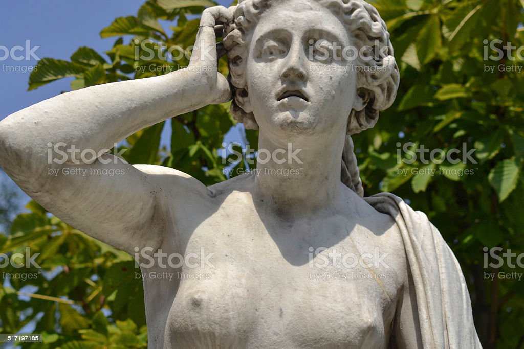 Andromache stock photo