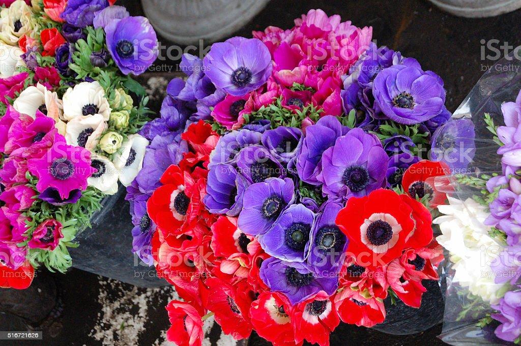 Anemone Bouquet stock photo