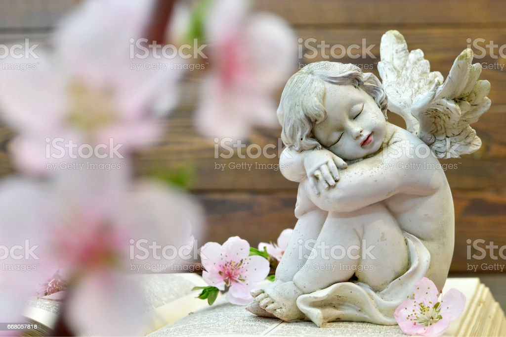 Angel and and spring flowers on wooden background stock photo