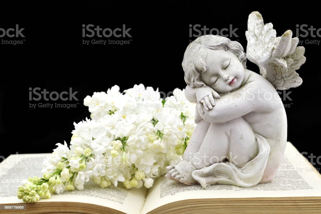 Angel and white spring flowers on the old book stock photo